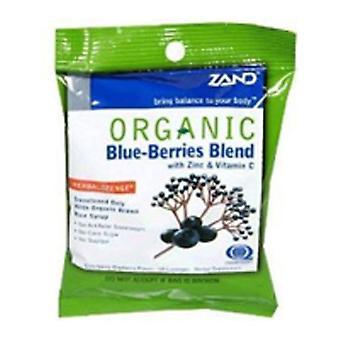 Zand Herbalozenge Bio, Baies Bleues 18 Loz