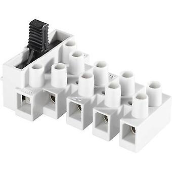 Adels-Contact 171302V9 Terminale a vite flessibile: 0,5-4 mm2 rigida: 0,5-4 mm2 Numero di perni: 2 1 pc(s)