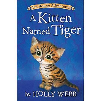 Un chaton nommé tigre (aventures de sauvetage pour animaux de compagnie)