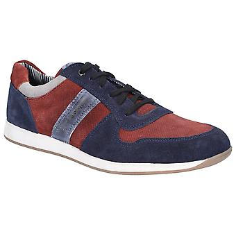 Basis London Mens Eclipse Suede Lace Up Trainer Navy / Bordo