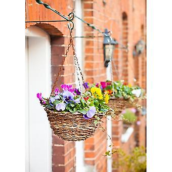 Ambassador Rattan Hanging Basket