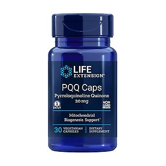 PQQ Caps with Bio PQQ 30 vegetable capsules