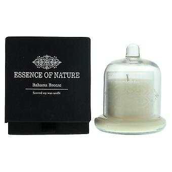 Liberty Candles Essence Of Nature Bahama Breeze - Scented Soy Wax Candle 127g