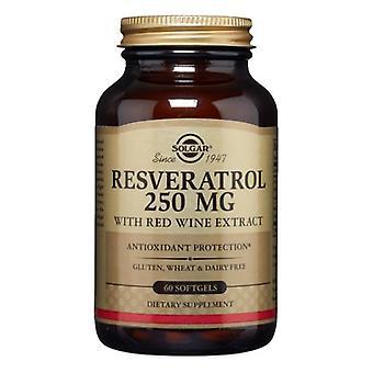 Solgar ريسفيراترول مع استخراج النبيذ الأحمر, 250 ملغ, 60 S Gels