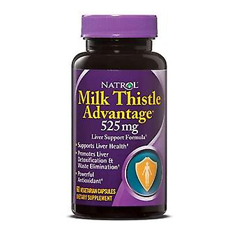 Natrol Milk Thistle Advantage, 60 Onglets