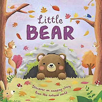 Little Bear [Board book]