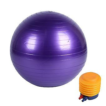 Glossy Exercise Balls With Pump+Air Pullout+Air Plug