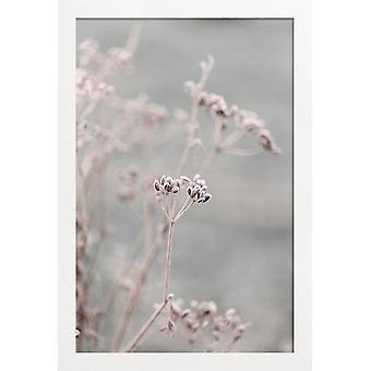JUNIQE Print - Frosty Morning 3 - Blomsterplakat i gråt > Pink