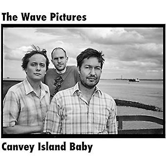 Wave Pictures - importazione di Canvey Island Baby [Vinyl] Stati Uniti d'America