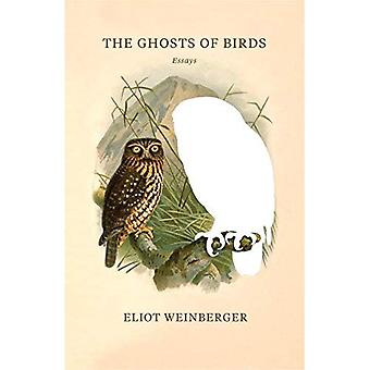 Los fantasmas de pájaros