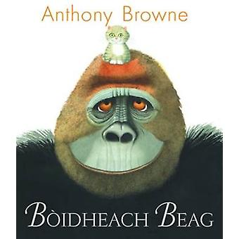 Boidheach Beag by Anthony Browne - 9780861523160 Book