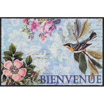 Salonloewe deurmat Pendulina 50 x 75 cm wasbaar vuil mat