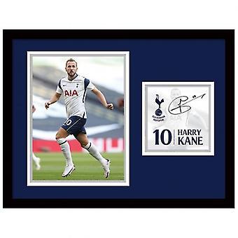 Tottenham Hotspur bild Kane 16 x 12