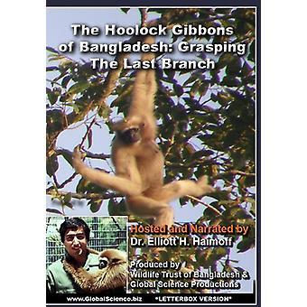 Hoolock Gibbons of Bangladesh: Grasping the Last [DVD] USA import