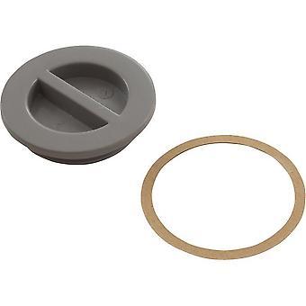 """Custom 25542-001-000 1.5"""" MIP piscine plat bouchon avec joint - gris"""