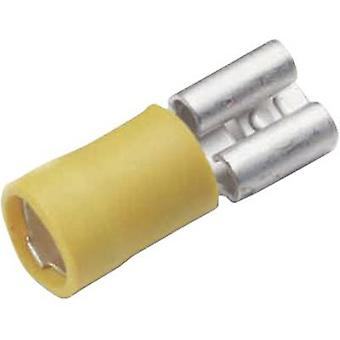 Cimco 180235 Blade receptacle Connector width: 9.5 mm Connector thickness: 1.2 mm 180 ° Partially insulated Yellow 1 pc(s)