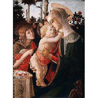 Madonna of the Rose Garden or Madonna, Sandro Botticelli