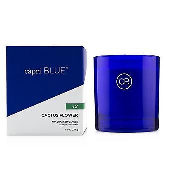 Capri blauwe handtekening kaars-cactus bloem 227g/8oz