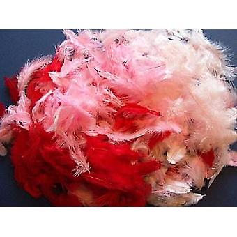 10g Mixed Red & Pink Feathers for Crafts