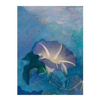 John La Farge  Nocturne Boxed Small Notecards by Illustrated by John La Farge