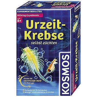 كوسموس 659219 Mitbring-Experimente Urzeit-Krebse العلم عدة 8 سنوات وأكثر