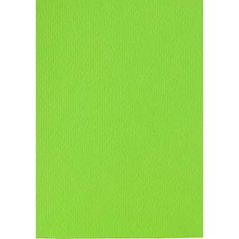 Papicolor 6X Cardboard 210X297mm-A4 Spring Green