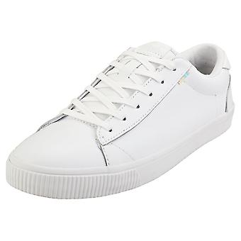Toms Carlson Mens Fashion Trainers in White
