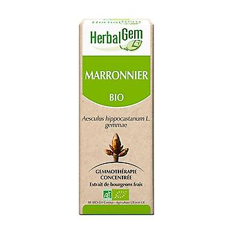 Marronnier BIO- 50ml 50 ml