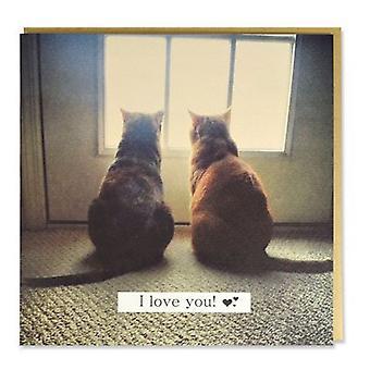 Magnet & Steel Tarjeta Dos Gatos I Love You (Cats , Training Aids , Anti-Stress)