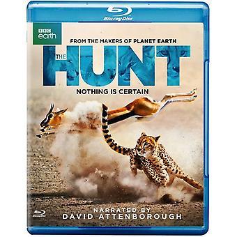 Hunt [Blu-ray] USA import