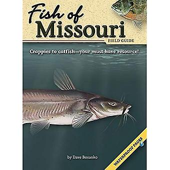 Poisson du Missouri Field Guide (Guides de terrain (Publications de l'aventure))