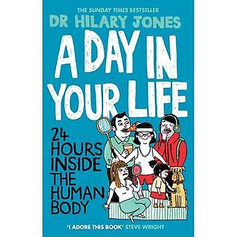 En dag i ditt liv: 24 timmar inne i människokroppen