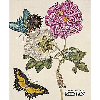Maria Sibylla Merian by Daniel Kiecol - 9783741916045 Book