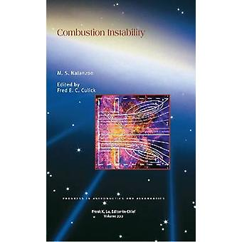 Combustion Instability by M.S. Natanzon - 9781563479281 Book