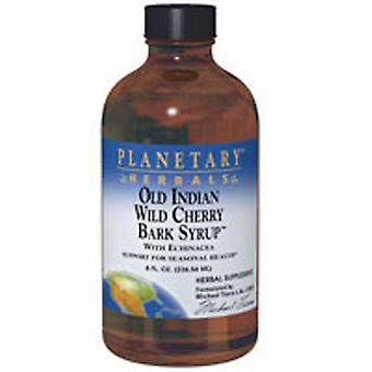 Planetary Herbals Old Indian Wild Cherry Bark Syrup, 8 oz