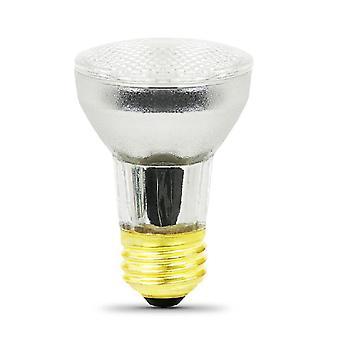 स्पा लाइट के लिए Jandy राशि R0450505 120V 100W दीपक