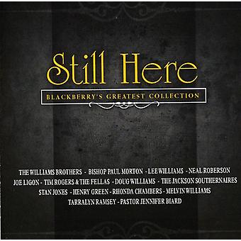 Still Here-Blackberry's Greatest Collection - Still Here-Blackberry's Greatest Collection [CD] USA import