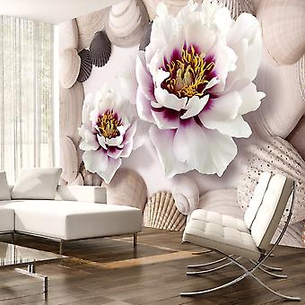 Fotobehang - Flowers and Shells