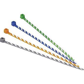 Panduit PLT1M-L3-10 PLT1M-L3-10 Cravată cablu 102 mm 2,50 mm Portocaliu, Alb cu coduri colorate 50 buc.