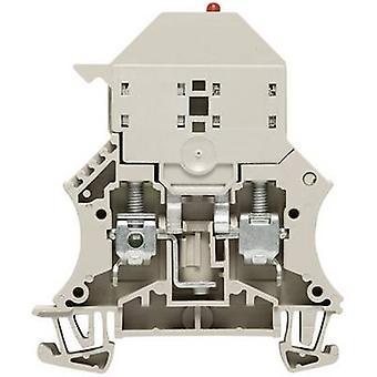 Blocos de terminais de fusíveis WSI 6/LD 10-36V DC/AC 10113000000-1 Grey Weidmüller 1 pc(s)