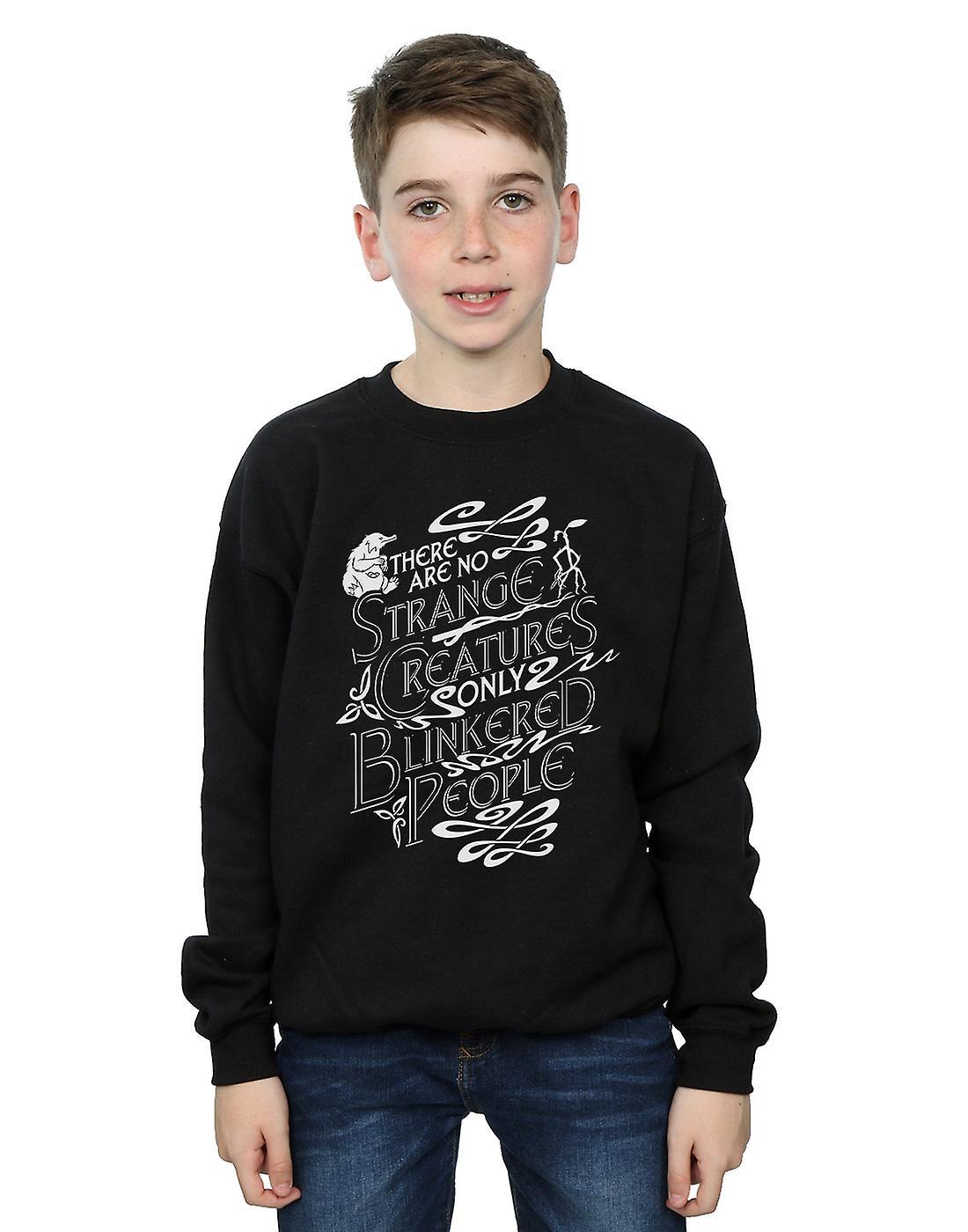 Fantastic Beasts Boys Strange Creatures Sweatshirt