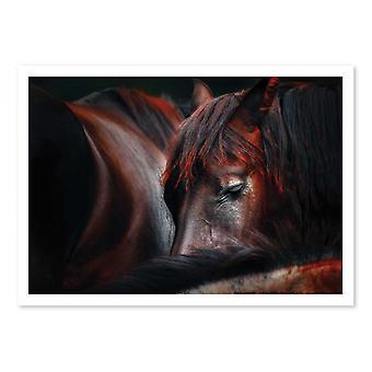 Art-Poster - Sleep huddle - Martin Stantchev