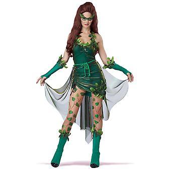 Lethal Beauty Poison Ivy Batman Supervillainess Women Costume