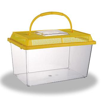 Transparente Reptilienbox aus Acryl
