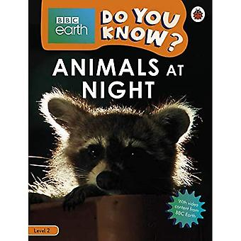 Do You Know? Level 2 - BBC Earth Animals at Night