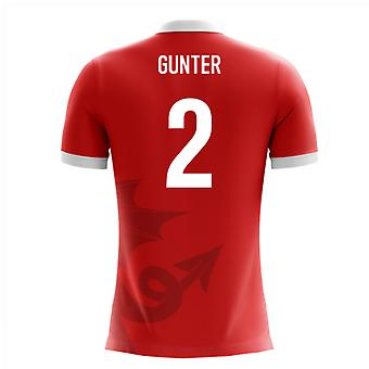 2020-2021 Wales Airo Concept Home Shirt (Gunter 2)