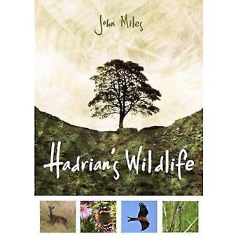 Hadrianus Wildlife