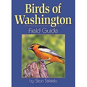 Birds of Washington Field Guide (Field Guides)