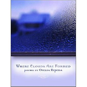 Where Clouds are Formed by Ofelia Zepeda - 9780816527786 Book