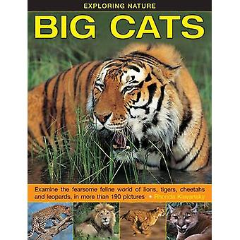 Exploring Nature Big Cats by Klevansky Rhonda